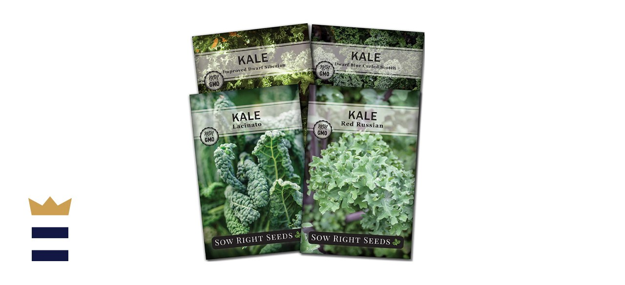 Sow Right Seeds - Kale Seed Collection for Planting
