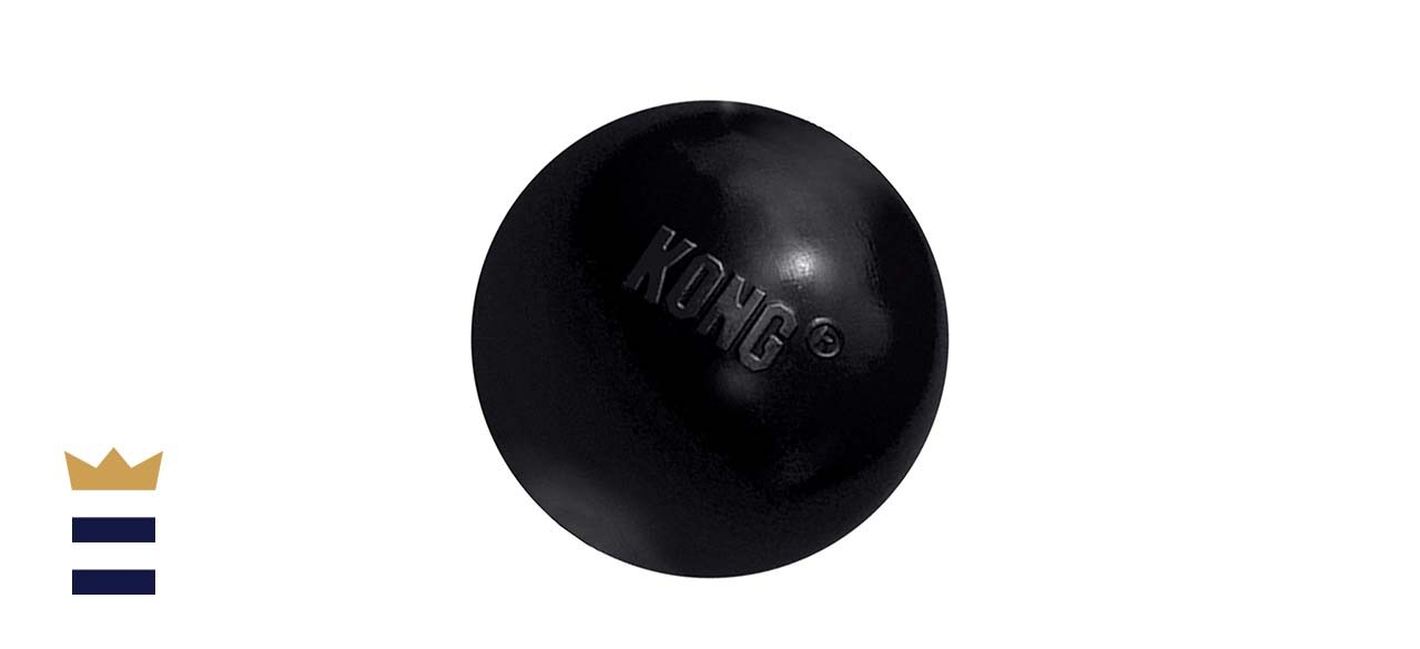 KONG - Extreme Ball - Durable Rubber Dog Toy