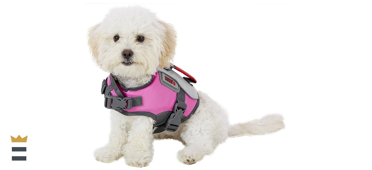 KONG Sport AquaFloat Dog Flotation Vest