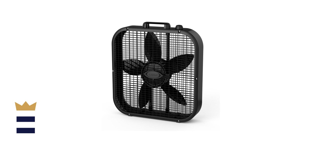 Lasko Black 20-inch Box Fan