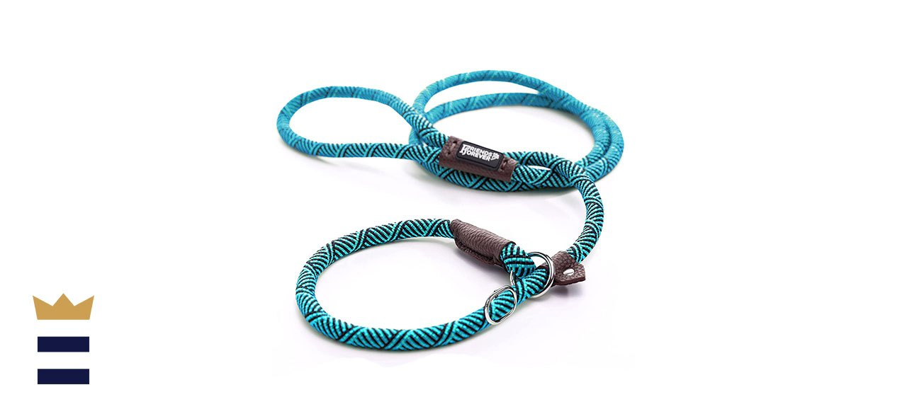 Friends Forever Extremely Durable Dog Rope Leash