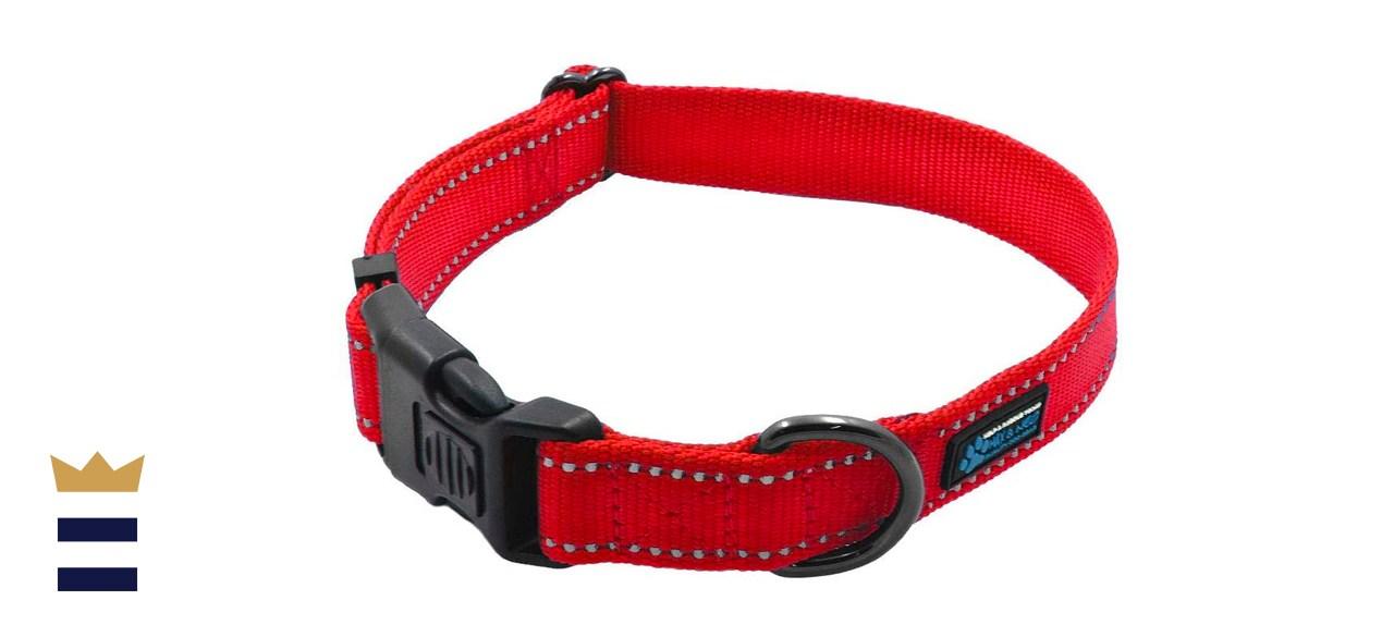 Max and Neo Nylon Buckle Reflective Dog Collar
