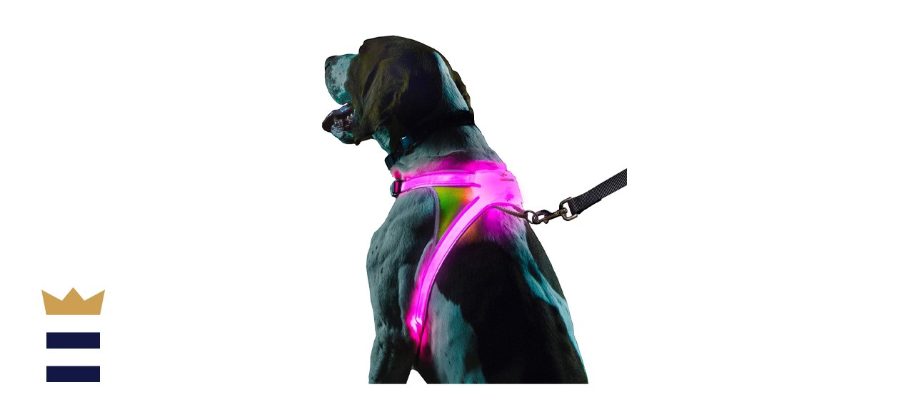 noxgear LightHound – Revolutionary Illuminated and Reflective Harness for Dogs