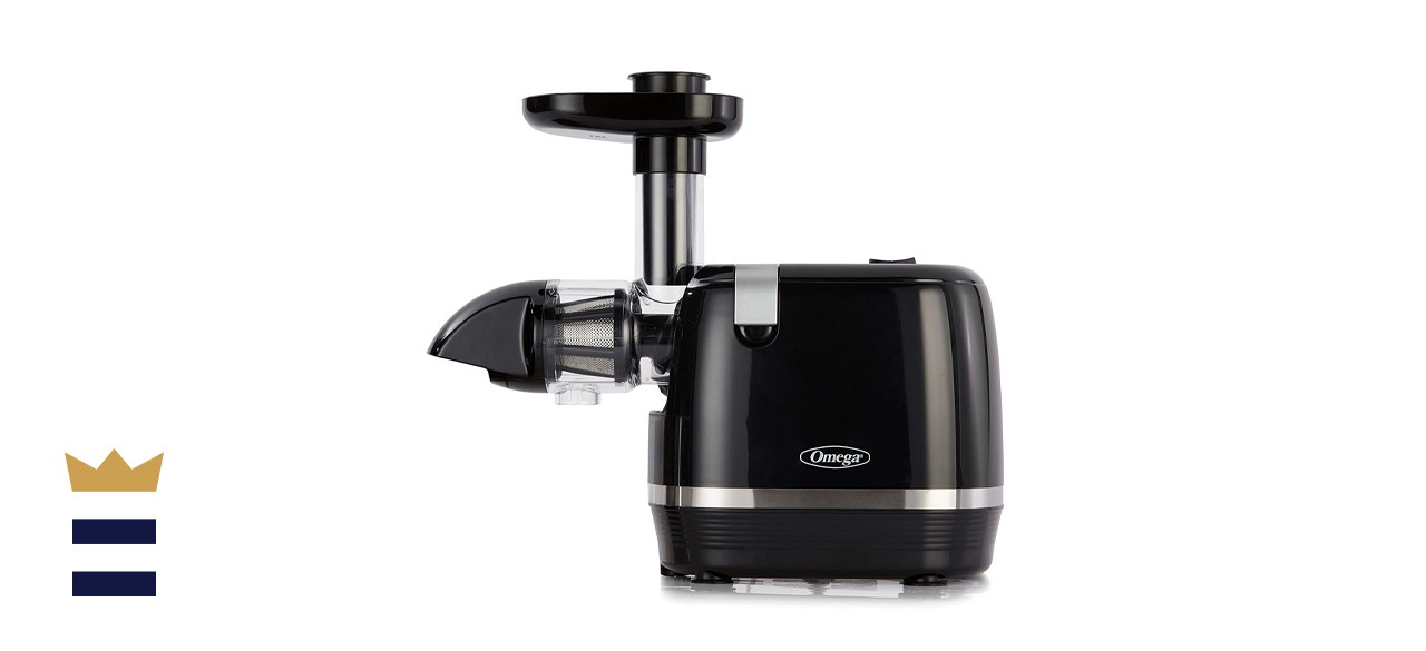 Omega H3000D Cold Press Slow Masticating Extractor