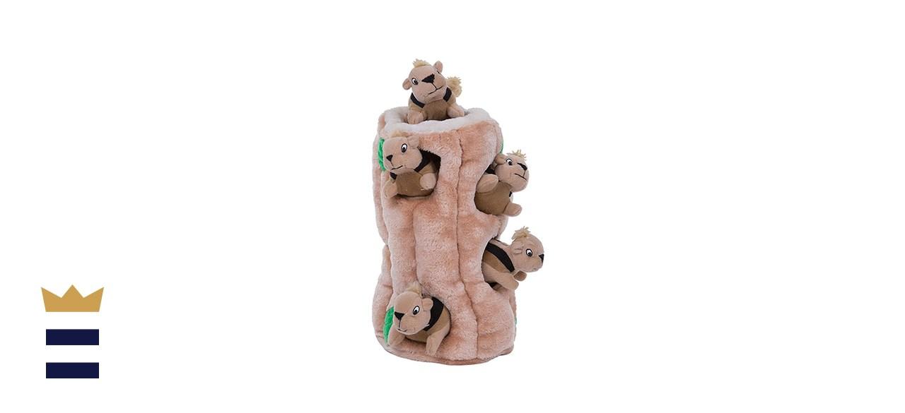 Outward Hound Hide-A-Squirrel Puzzle Toy