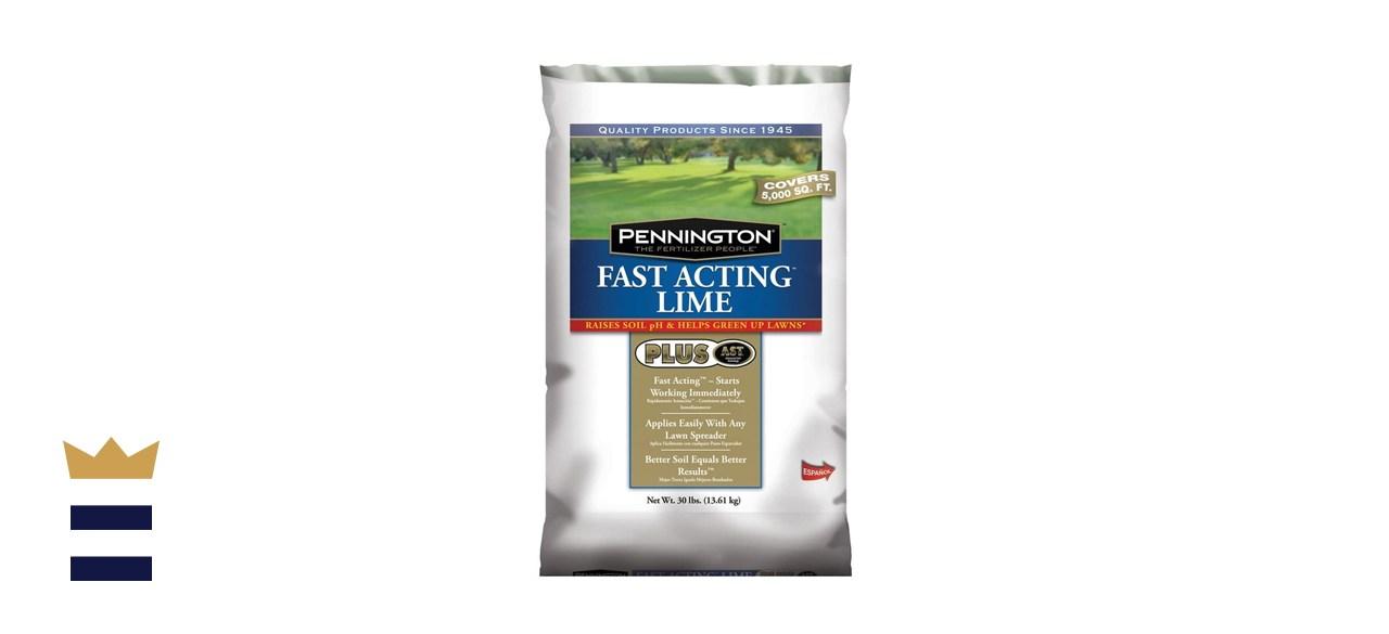 Pennington Fast-Acting Lime Plus AST