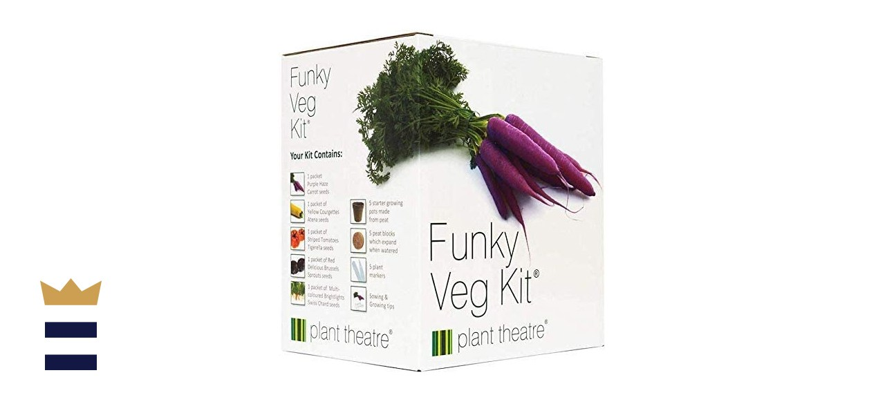 Plant Theatre Funky Veg Kit