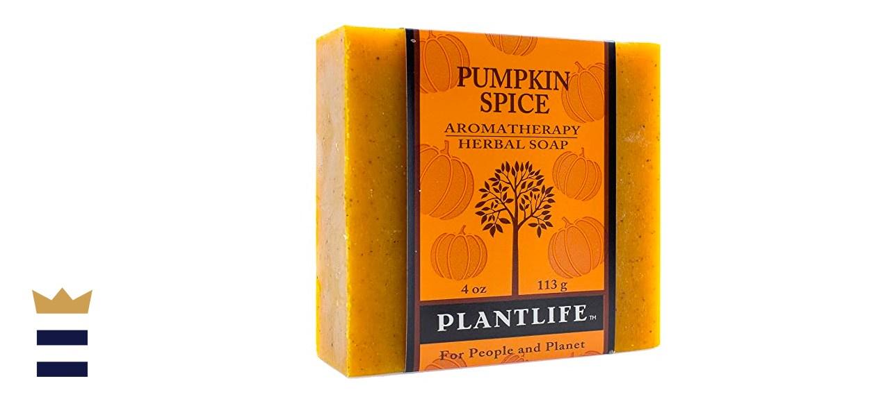Plantlife Pumpkin Spice Aromatherapy Herbal Soap