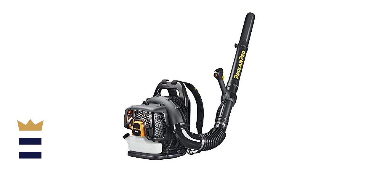 Poulan Pro PR48BT Backpack Leaf Blower