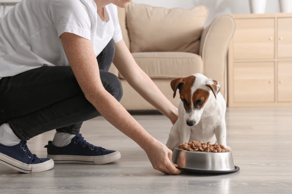 purina pro plan dog food3