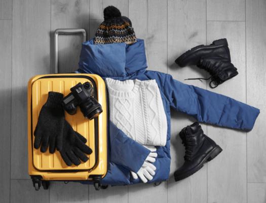 ski boot bag1