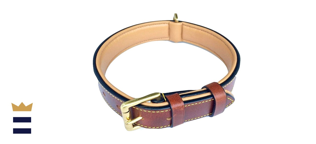 Soft Touch Luxury Padded Leather Dog Collar