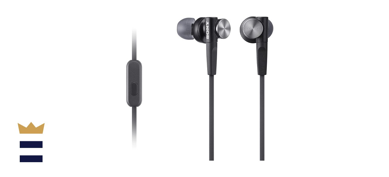 Sony Extra Bass Earbud Headphones/Headset with Mic for Phone Call