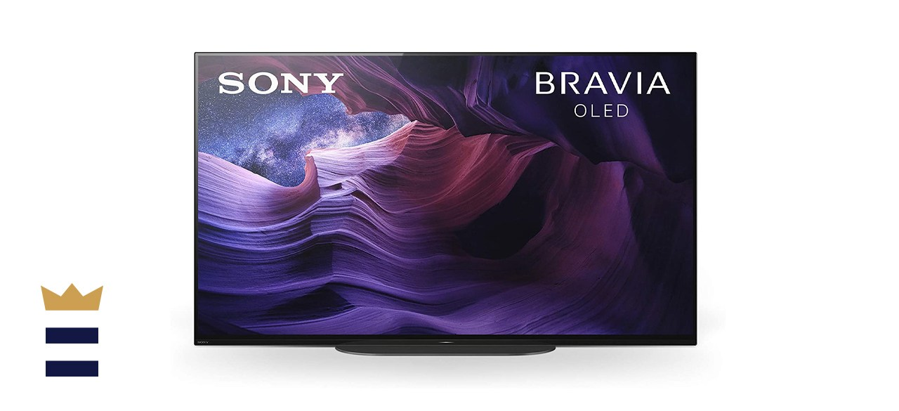 Sony XBR-48A9S 48-inch MASTER Series BRAVIA OLED 4K Smart HDR TV