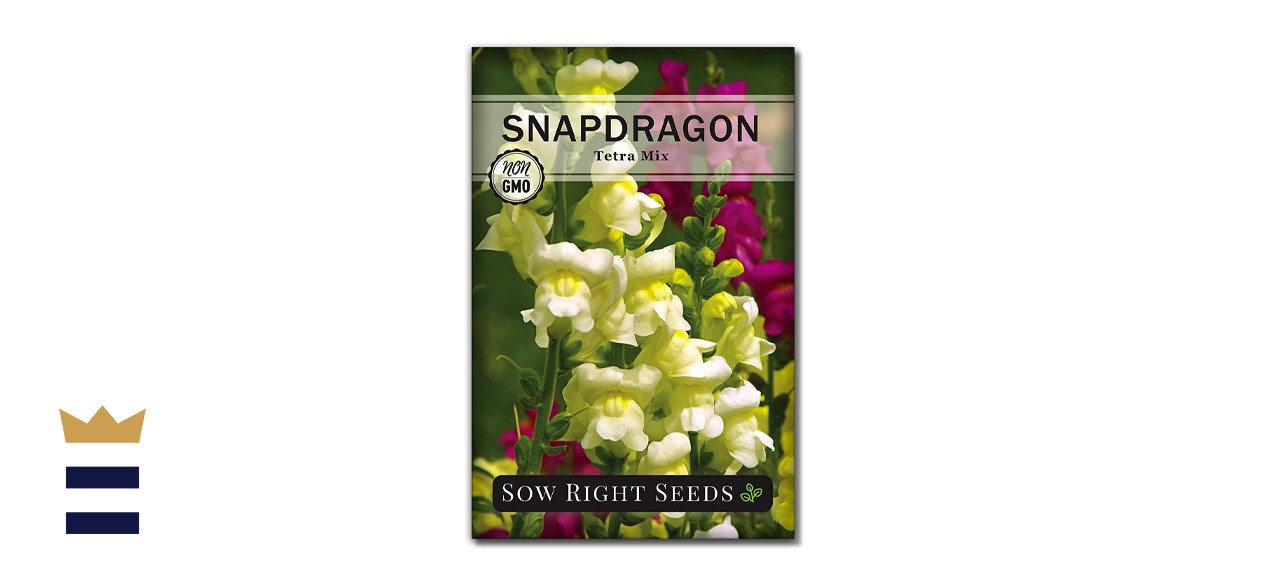 Sow Right Seeds Snapdragon Flower Seeds