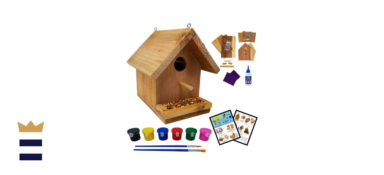 SparkJump Jr Birdhouse Kit With Paint Set, Cedar Wood for Outdoors