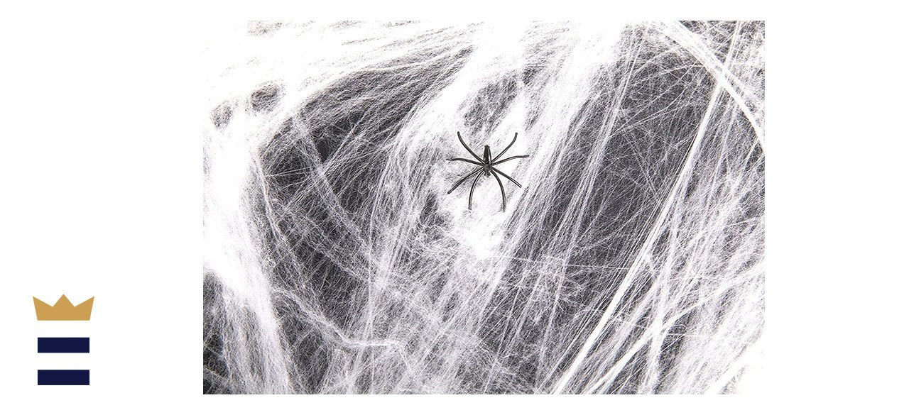 Stretchy Spider Web