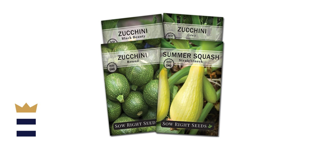 Sow Right Seeds - Zucchini Squash Seed Collection for Planting
