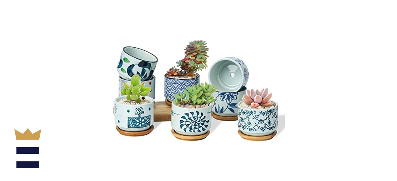 T4U 3-Inch Ceramic Succulent Planter Pots with Bamboo Trays, Set of 8