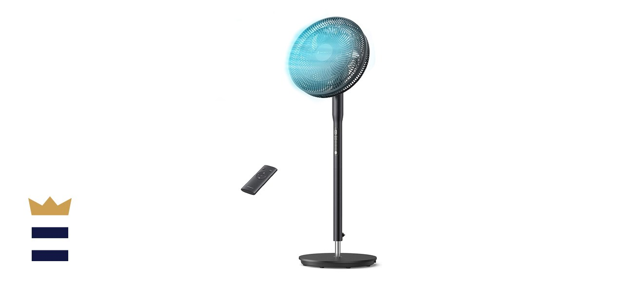 TaoTronics Oscillating Pedestal Fan