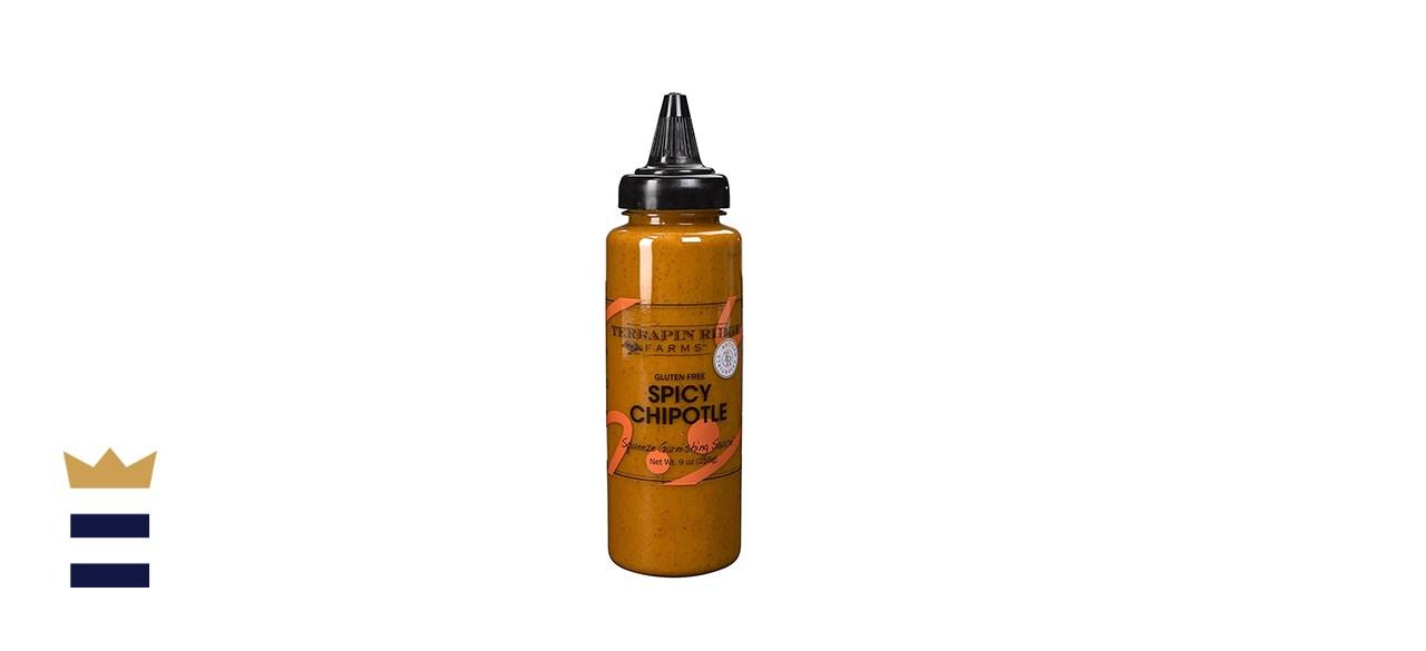 Terrapin Ridge Farms Spicy Chipotle Garnishing Sauce