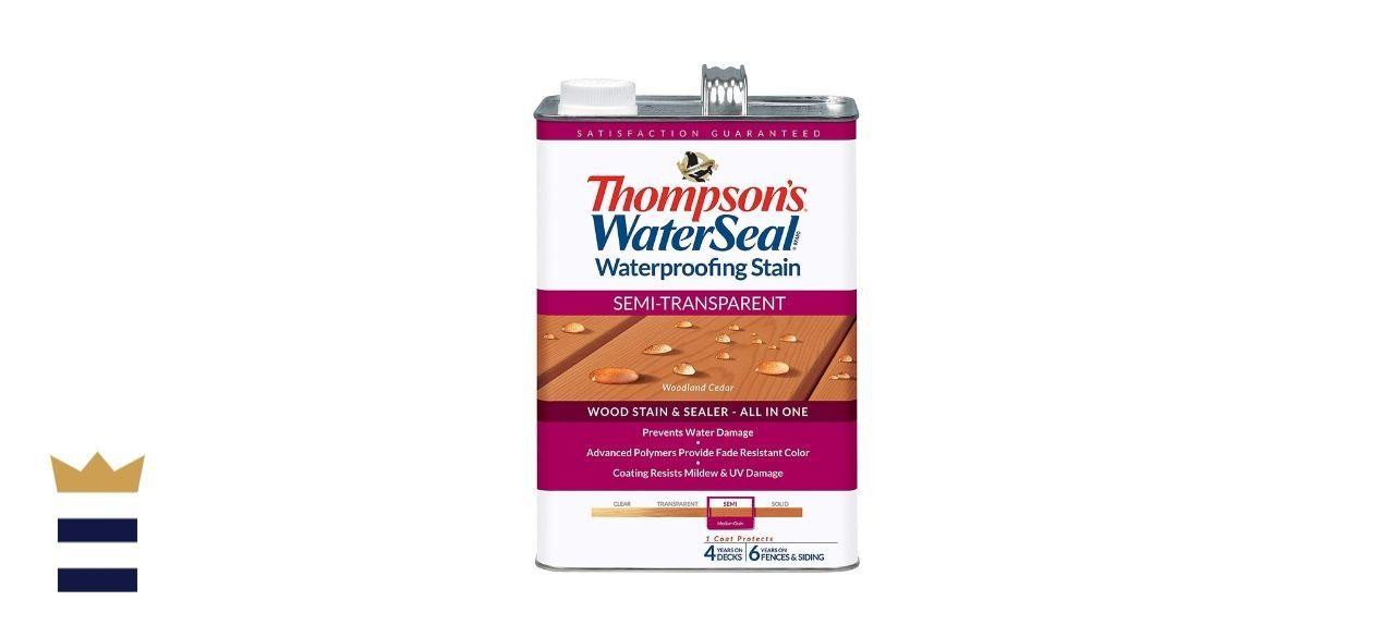 Thompson's Waterseal Waterproofing Stain