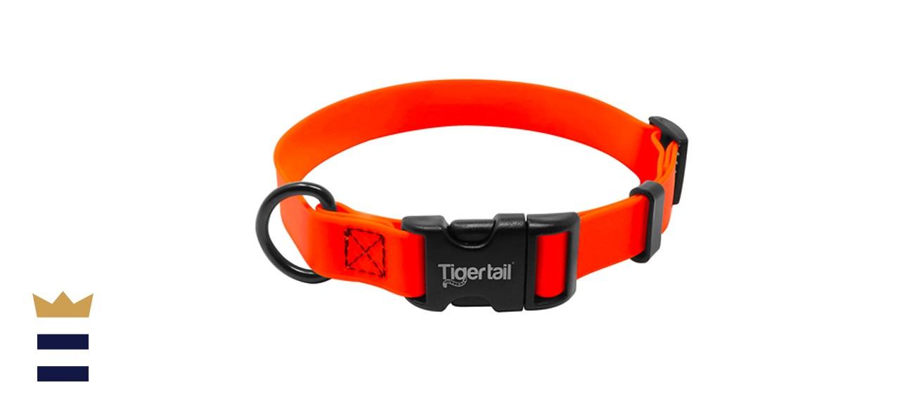 Tiger Tail Urban Nomad Dog Collar