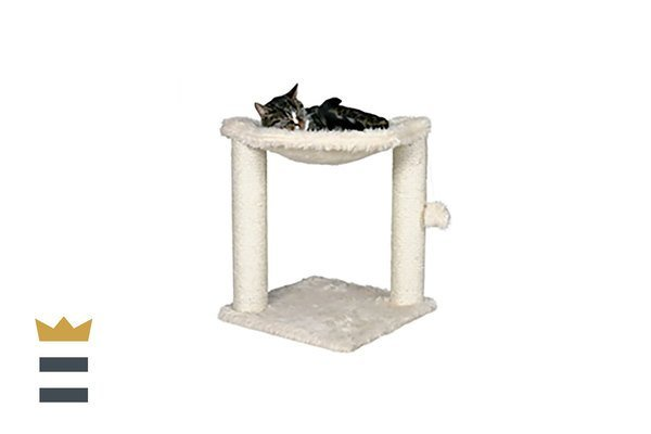 Trixie cat post