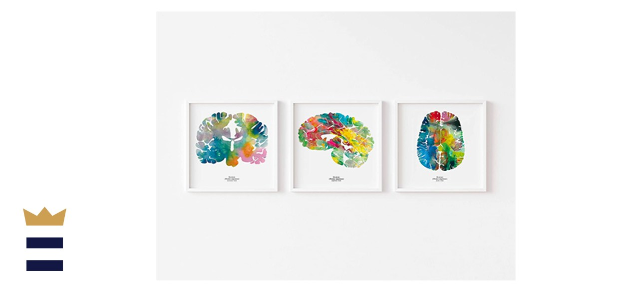 Watercolor Neuroscience Calming Wall Art