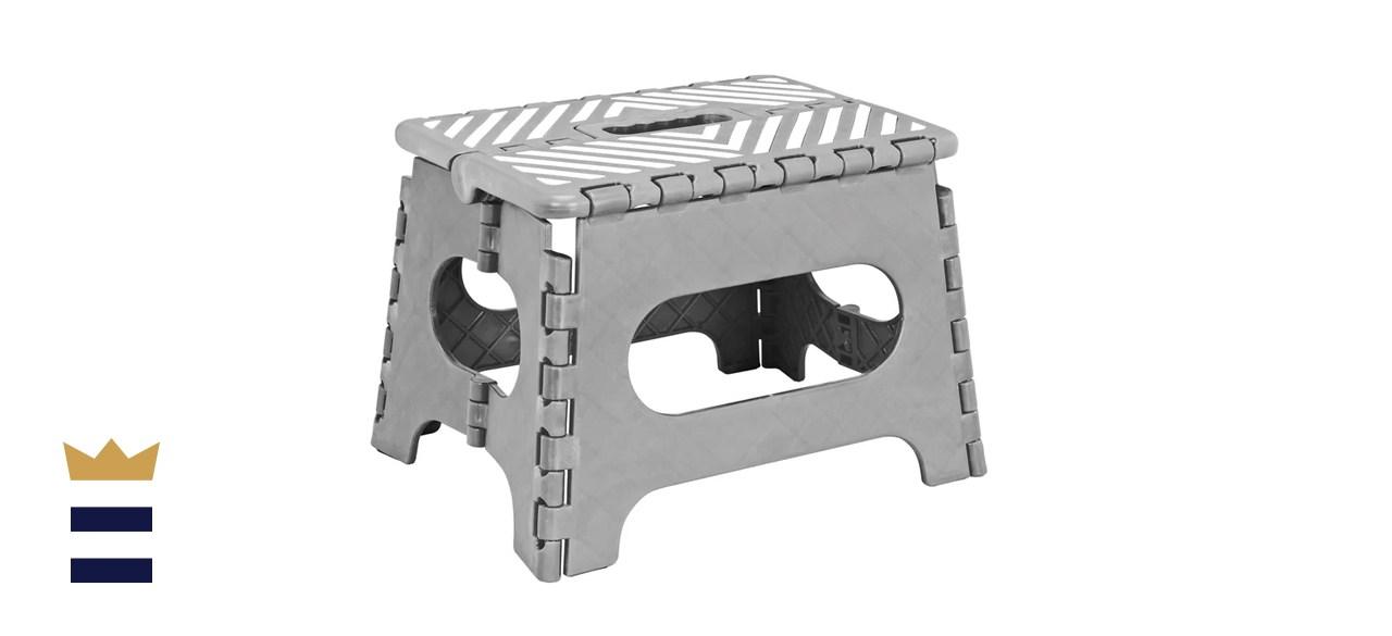 Wayfair Basics 1-Step Folding Step Stool