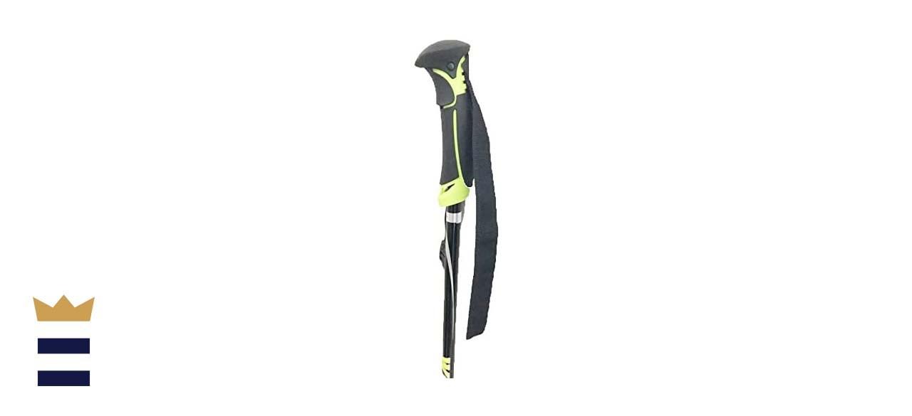 WINGET's Carbon Fiber Alpine Ski Poles