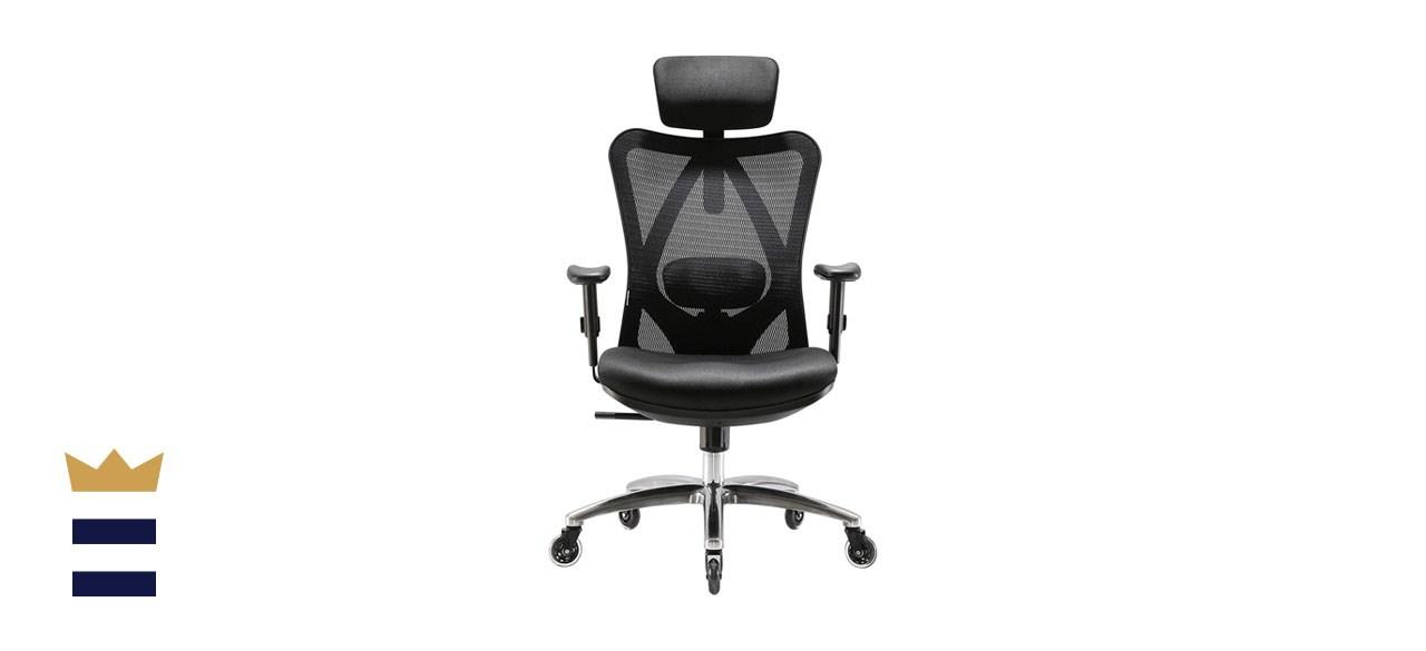 XUER Ergonomics Office Chair Mesh Computer Desk Chair