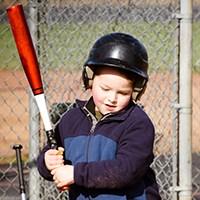 baseball training bats 2