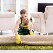 carpet dryer2