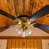 ceiling fan2