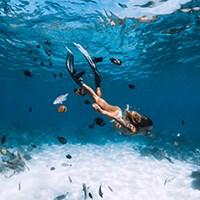 diving fin2