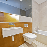 dual flush toilet3