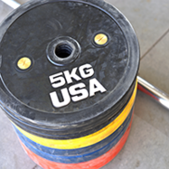 olympic bumper plate2